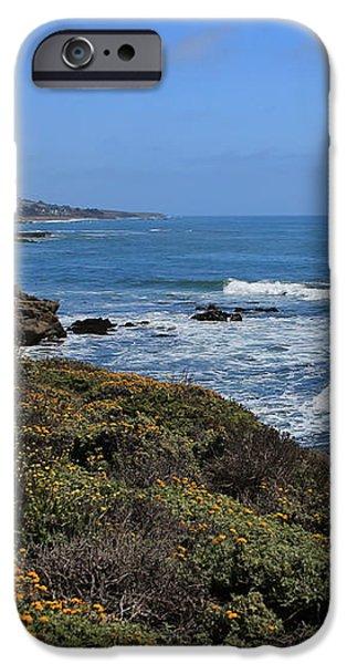Moonstone Beach iPhone Case by Heidi Smith