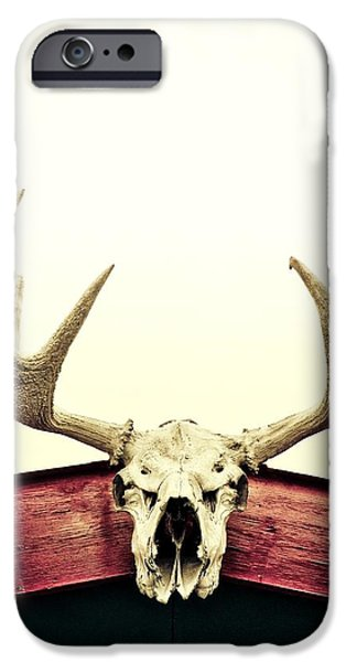 moose trophy iPhone Case by Priska Wettstein