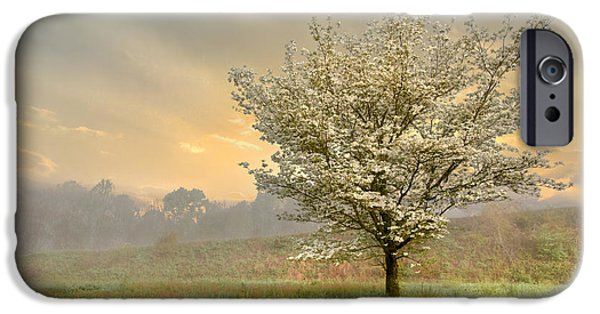 Recently Sold -  - Fog Mist iPhone Cases - Morning Celebration iPhone Case by Debra and Dave Vanderlaan