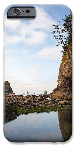 Oregon Coast iPhone Cases - Morning Columns iPhone Case by Mike Reid