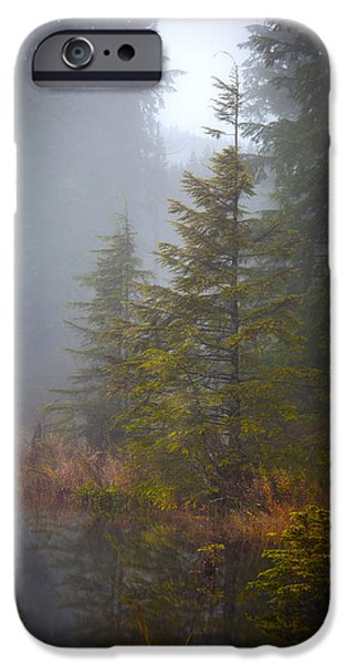 Fall Colors Photographs iPhone Cases - Morning Fall Colors iPhone Case by Mike Reid