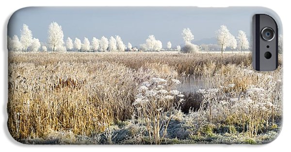 Willow Lake iPhone Cases - Morning Frost iPhone Case by Duncan Shaw
