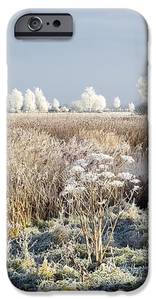 Morning Frost iPhone Case by Duncan Shaw