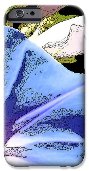 Morning Glory iPhone Case by Artist and Photographer Laura Wrede