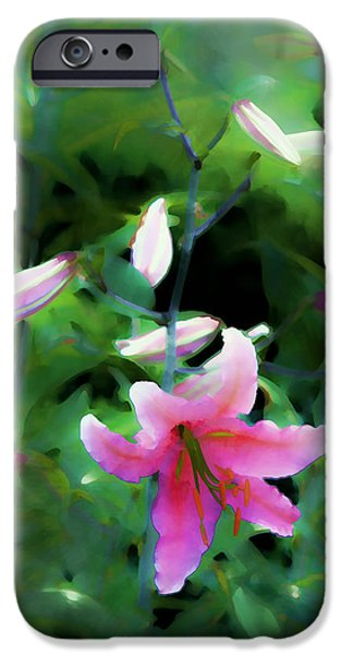 Artistic Photography iPhone Cases - Morning Glow iPhone Case by Tom Prendergast