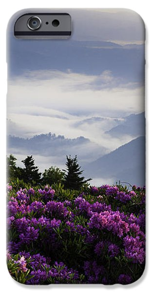 Morning on Grassy Ridge Bald iPhone Case by Rob Travis