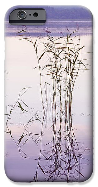 Morning Zen. Pearly Moments of Sunrise. Ladoga Lake. Northern Russia iPhone Case by Jenny Rainbow