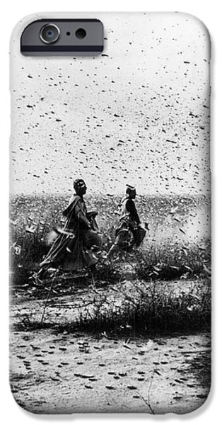 MOROCCO: LOCUSTS, 1954 iPhone Case by Granger