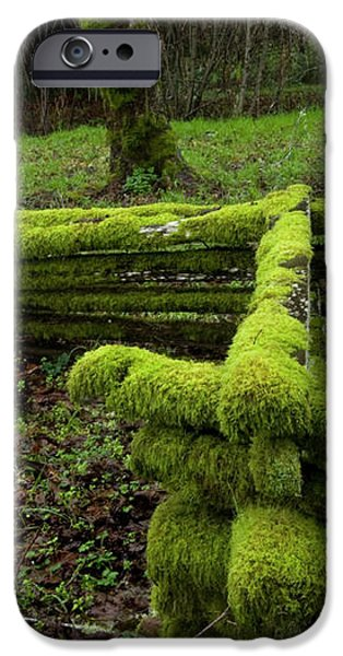 Mossy Fence 4 iPhone Case by Bob Christopher
