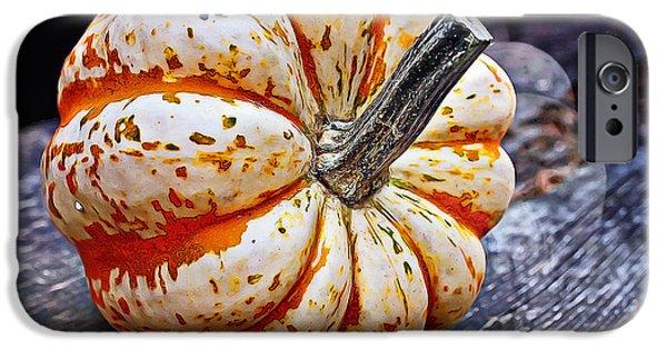 Thanksgiving Digital iPhone Cases - Mother Pumpkin iPhone Case by Jutta Maria Pusl