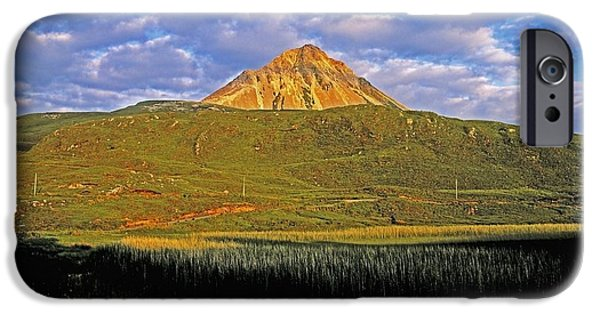 Aquatic Plants iPhone Cases - Mount Errigal, Co Donegal, Ireland iPhone Case by The Irish Image Collection