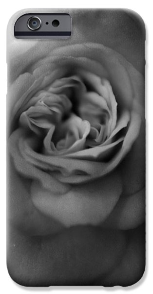 Macro iPhone Cases - Mourning You iPhone Case by Laurie Search