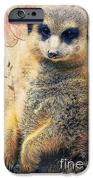 Animal Photography Mixed Media iPhone Cases - Mrs Suricate iPhone Case by Angela Doelling AD DESIGN Photo and PhotoArt