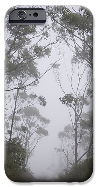 Mt Lanaihale, Munro Trail iPhone Case by Greg Vaughn - Printscapes