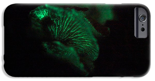 Luminescent iPhone Cases - Mushroom Bioluminescence iPhone Case by Ted Kinsman