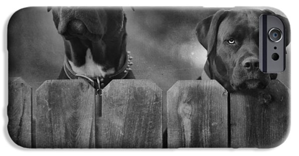 Dog iPhone Cases - Mutt and Jeff 2 iPhone Case by Larry Marshall
