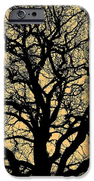My Friend iPhone Cases - My Friend - The Tree ... iPhone Case by Juergen Weiss