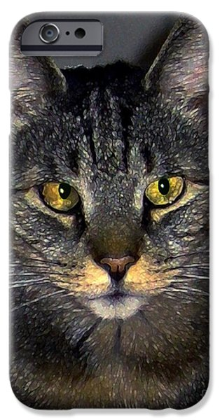 American Shorthair iPhone Cases - My Sweet Cross-Eyed Zack iPhone Case by Dale   Ford
