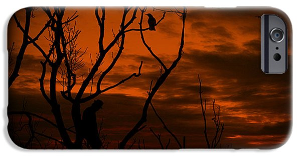 Crow iPhone Cases - Mysterious Stranger iPhone Case by Lourry Legarde