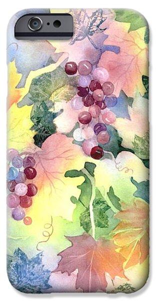 Napa Valley Morning 2 iPhone Case by Deborah Ronglien
