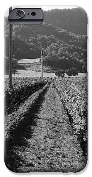 Napa Valley Vineyard .  Black and White . 7D9020 iPhone Case by Wingsdomain Art and Photography