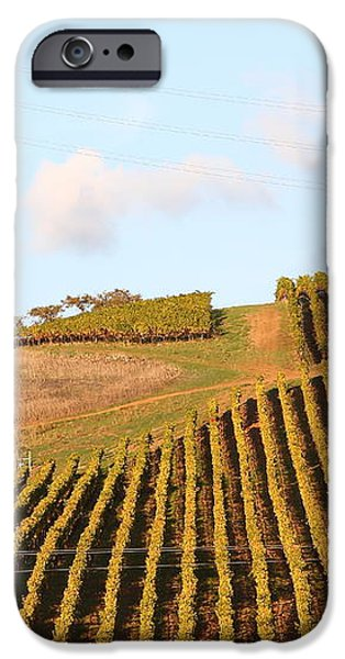 Napa Valley Vineyard . 7D9066 iPhone Case by Wingsdomain Art and Photography