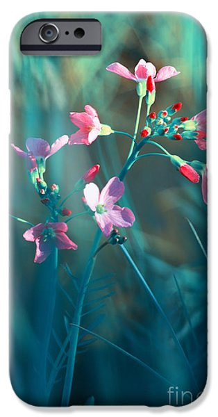 Nature Fantasy iPhone Case by Tanja Riedel
