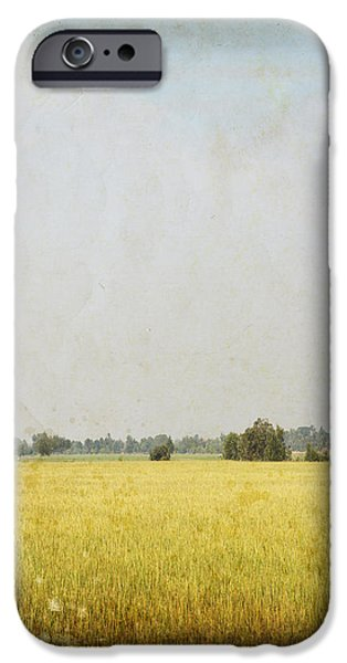 nature painting on old grunge paper iPhone Case by Setsiri Silapasuwanchai