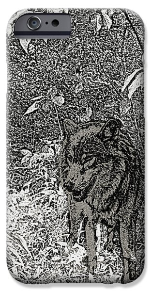 NATURE WALK WOLF iPhone Case by Debra     Vatalaro