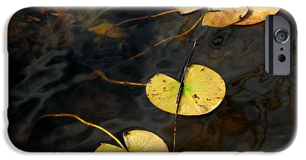 Nature Center Pond iPhone Cases - Natures Lily Pad Garden iPhone Case by LeeAnn McLaneGoetz McLaneGoetzStudioLLCcom