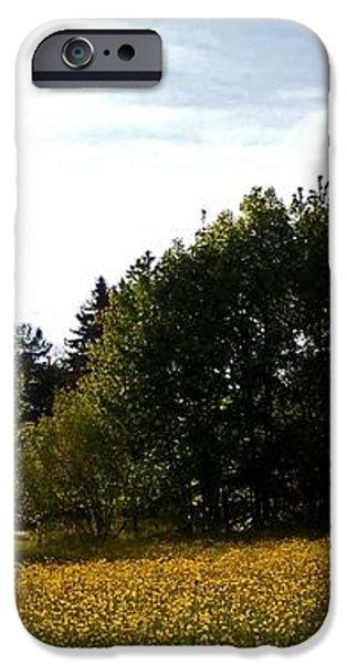 Neighbours Garden ... iPhone Case by Juergen Weiss