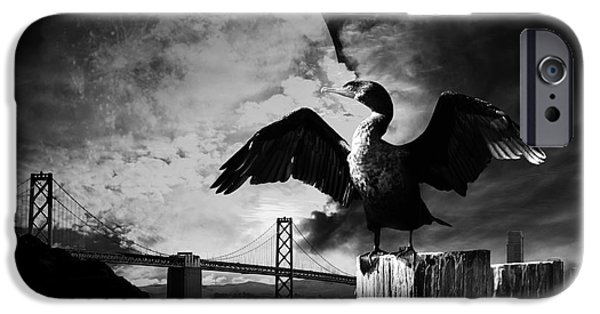 Baybridge iPhone Cases - Night of The Cormorant . Black and White iPhone Case by Wingsdomain Art and Photography