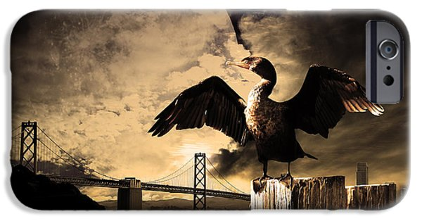 Baybridge iPhone Cases - Night Of The Cormorant iPhone Case by Wingsdomain Art and Photography