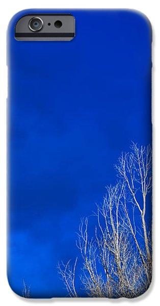 Night Sky iPhone Case by Steve Gadomski