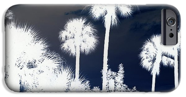 Palm Tree Greeting Cards iPhone Cases - Nite Comes Alive iPhone Case by Florene Welebny