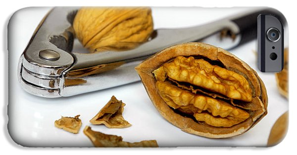 Autumn iPhone Cases - Nut Cracker iPhone Case by Carlos Caetano