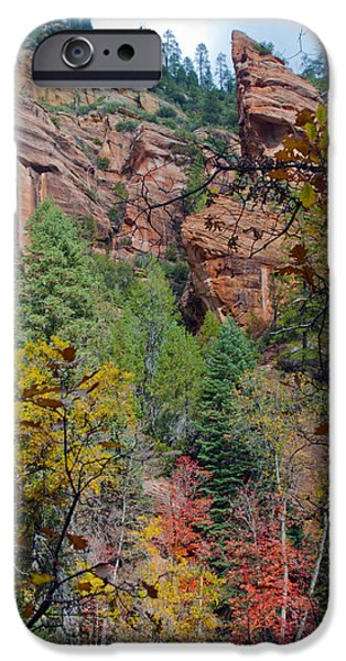 West Fork iPhone Cases - Oak Cliff iPhone Case by Brian Lambert
