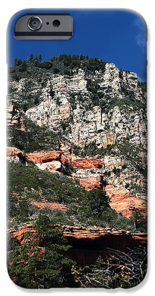 Oak Creek Nature iPhone Case by John Rizzuto