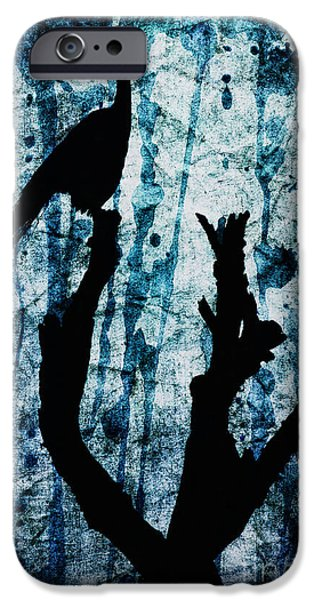 Manipulation iPhone Cases - Obsidian Realm iPhone Case by Andrew Paranavitana