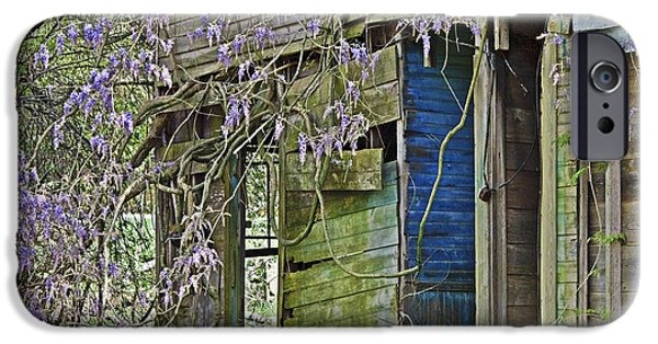 Susan Leggett iPhone Cases - Old Abandoned House iPhone Case by Susan Leggett