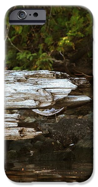 Old Broken Tree iPhone Case by Marjorie Imbeau