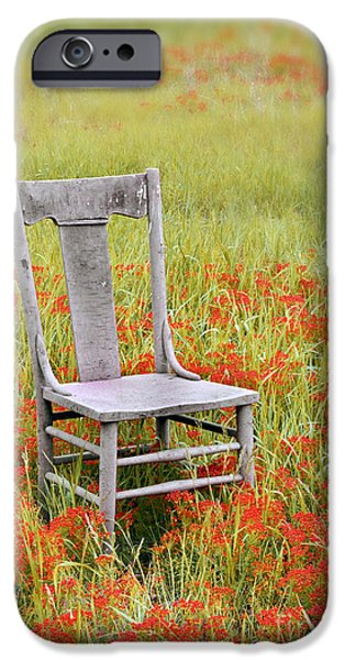 Chairs iPhone Cases - Old Chair in Wildflowers iPhone Case by Jill Battaglia