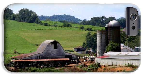 Tennessee Barn iPhone Cases - Old Dairy Barn iPhone Case by Karen Wiles