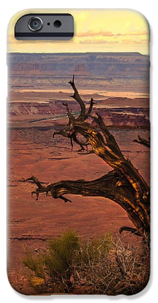 Old One iPhone Case by Robert Bales