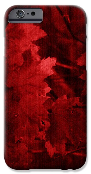 Old Red iPhone Case by Marjorie Imbeau