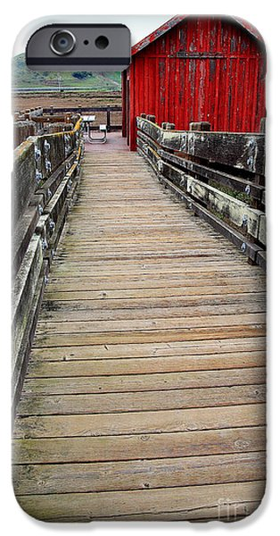 Old Red Shack At The End of The Walkway iPhone Case by Wingsdomain Art and Photography