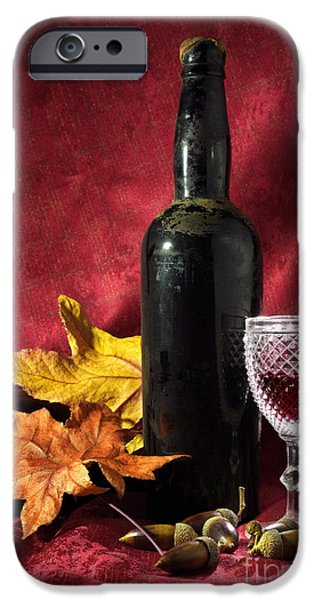 Mast iPhone Cases - Old Wine Bottle iPhone Case by Carlos Caetano