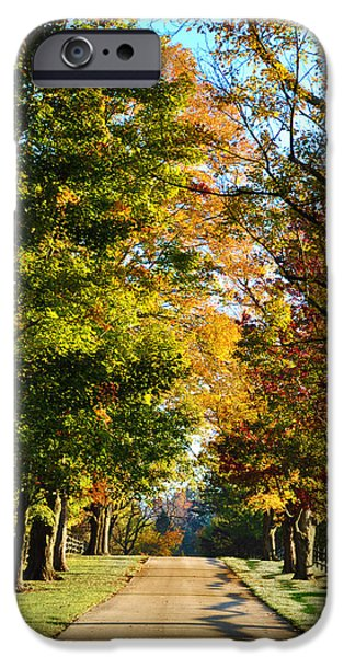 Maine Roads iPhone Cases - On a Country Road iPhone Case by Bill Cannon