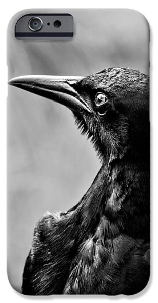 On Alert - BW iPhone Case by Christopher Holmes