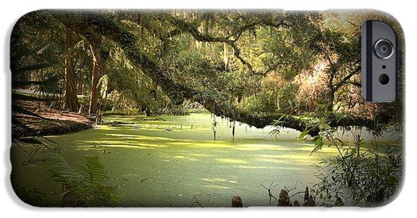 Scott Pellegrin Photography iPhone Cases - On Swamps Edge iPhone Case by Scott Pellegrin